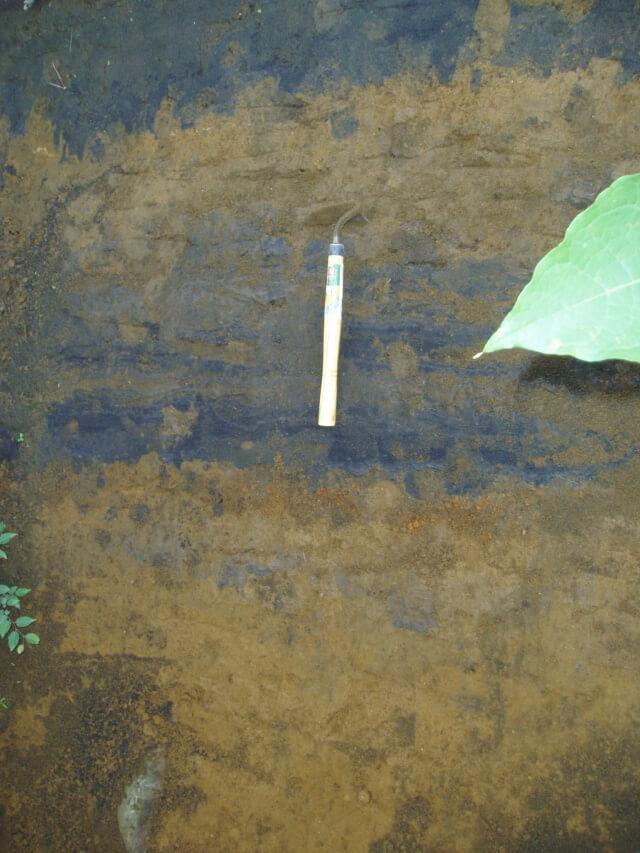 駒草平火砕岩に対比される火山灰層 | 蔵王山